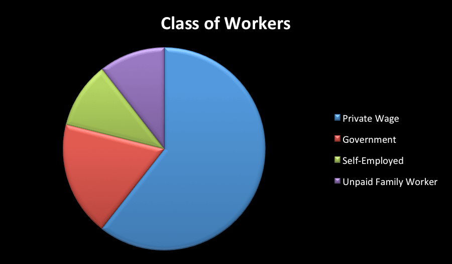Demographic Pie Chart - Class of Worker
